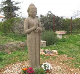 Buda en el jardin. Enero 2015