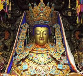 Buda Yocan