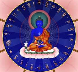 Buda de la Medicina 2016