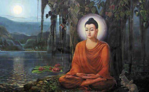 Buda en el bosque